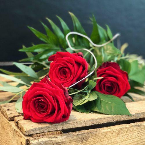 3 aufgebundene rote Rosen