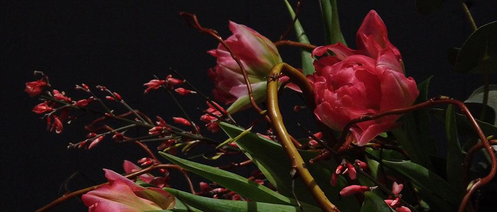 Blumenversand zum Valentinstag mit Wilp24